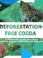 Deforestation-free cocoa copy